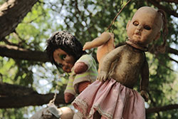 Sundance Vacations Doll Island Halloween