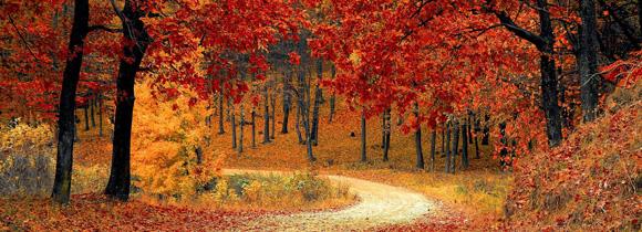 Fall fun in the Poconos